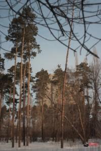 Спорткомплекс Нептун, Липецк, утро 07.03.2012