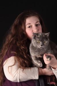 Фото британской кошки в Липецке, фотосессия домашних животных